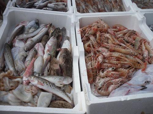 Palomonte, sequestro di oltre 60 chili di pesce privi di tracciabilità