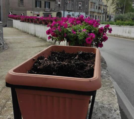 Rubano fiori ed acqua dalla fontana pubblica, dura presa di posizione del sindaco di Baronissi