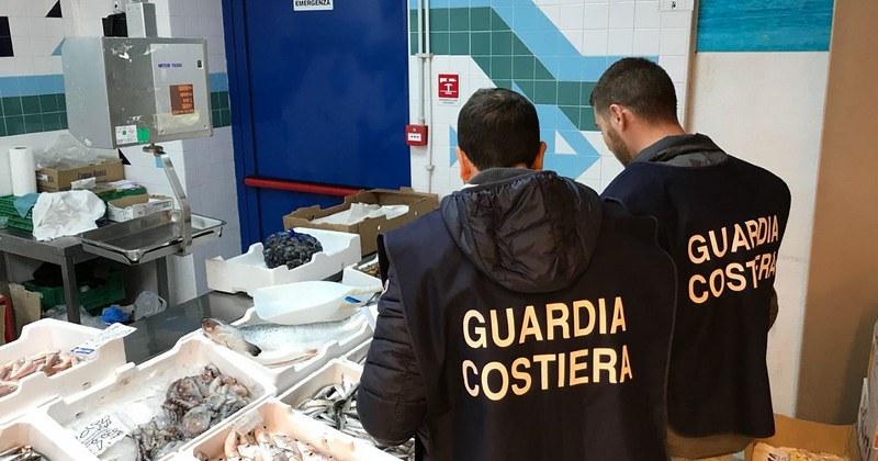 Pesca e commercio illegali. Sanzioni e sequestri tra Pisciotta, Santa Marina e Camerota e altre zone del Cilento