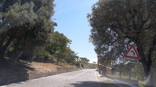 Prevenzione incendi boschivi e dissesto idrogeologico in collaborazione con le Comunità montane