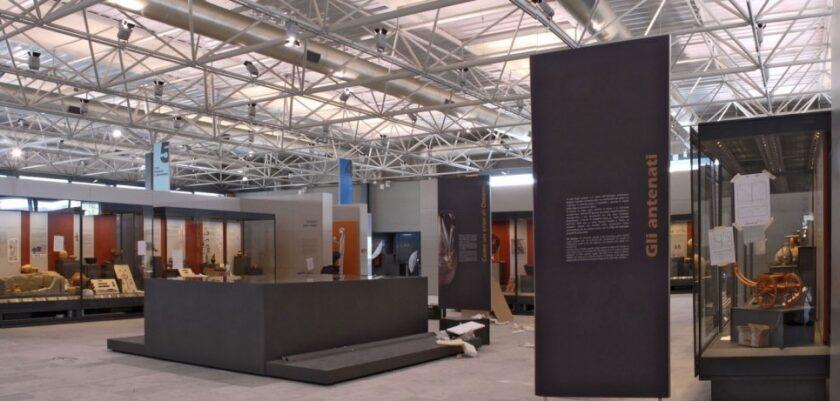 Museo Archeologico Nazionale di Pontecagnano, l'eleganza del cigno. Nuove scoperte per nuovi racconti