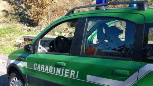 Abusi nel Parco Nazionale del Cilento: 5 sequestri a Palinuro e Montecorice