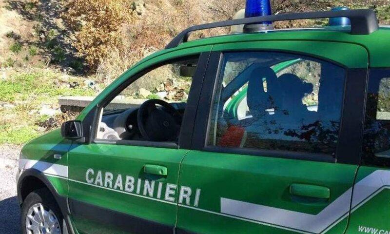 Dispersi in montagna a Torraca, due giovani ritrovati dopo 6 ore di ricerche