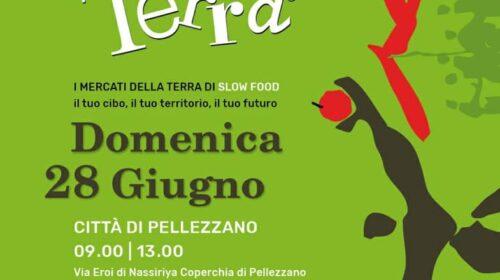 """Pellezzano – domenica 28 giugno riparte l'iniziativa salutare """"i Mercati della Terra"""""""
