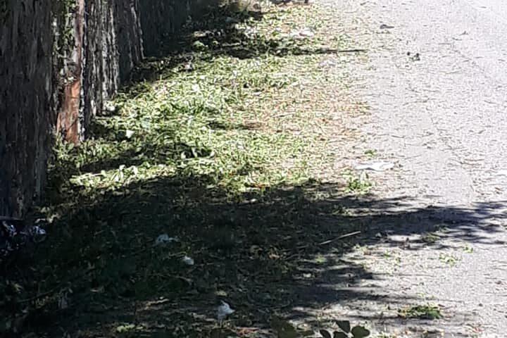 Pellezzano: il sindaco Morra ringrazia l'intervento degli operai della comunità montana per la pulizia delle strade
