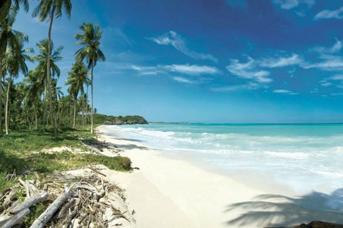 Coronavirus. Oms record di contagi, 284 mila in un giorno. Bahamas in lockdown