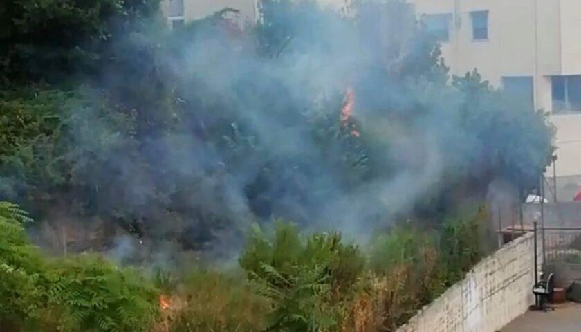 Doppio intervento tra Capezzano e Coperchia per un albero caduto e per un incendio