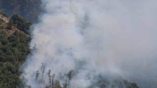 Incendio a Bracigliano, nei guai proprietario di un oliveto