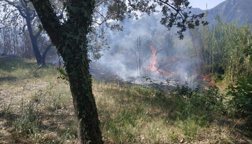 Incendio tra Ascea e Pisciotta, chiusa la Strada provinciale