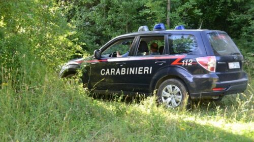 Cento giovani al Rave party in pineta, multe e denunce a Eboli