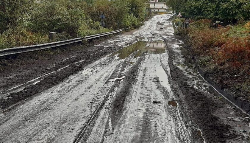 Gli interventi della Provincia per l'emergenza maltempo su tutta la rete viaria provinciale