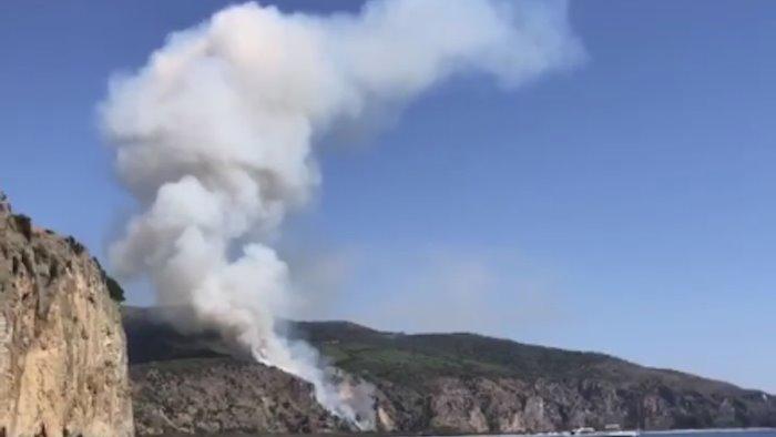 Incendio nella Pineta Sant'Icono: chiusa la strada tra Palinuro e Camerota