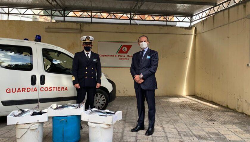 Chili di pesce sequestrato donato allo Smom dalla Guardia Costiera di Salerno