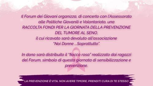 Mercato San Severino – domenica 18 ottobre ci sarà una raccolta fondi per la giornata per la prevenzione del tumore al seno