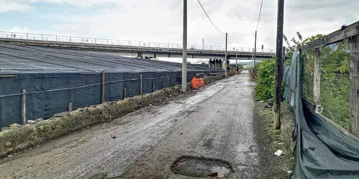 Gli operai dell'Acse ripuliscono via Vicinale Cangiani a Scafati. Il monito della consigliera comunale Antonella Vaccaro