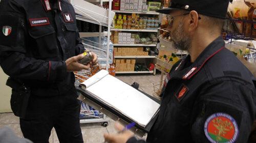 Specie protette, 250 controlli del Cites Salerno con 6 denunce e multe per 6mila euro