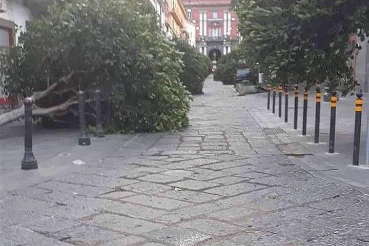 Sarno, il vento abbatte gli alberi in centro