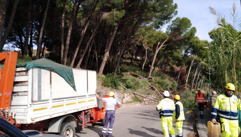 Salerno, a due mesi dall'incendio resta ancora chiusa via Panoramica