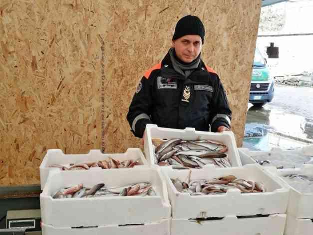 Frontiere tracciabili, la Guardia Costiera sequestra tonnellate di pesce