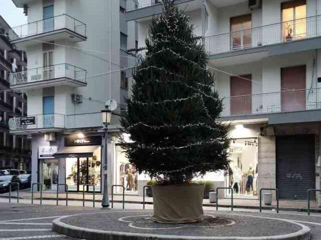 """Salerno, ecco l'installazione di 12 alberi di Natale in sostituzione di """"Luci d'Artista"""""""