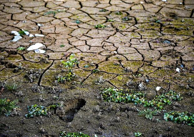 """Clima, Paesi sviluppati """"gonfiano"""" di 20 mld aiuti ai poveri"""