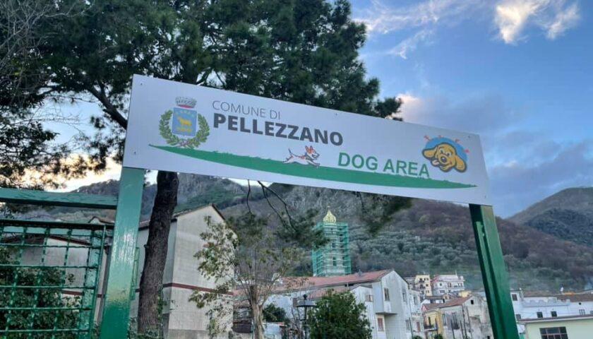 """INAUGURATA LA PRIMA """"DOG AREA"""" NEL COMUNE DI PELLEZZANO"""