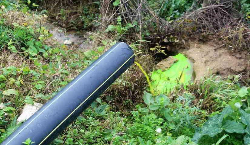 Eboli, danni all'Ambiente: nei guai titolare di azienda zootecnica