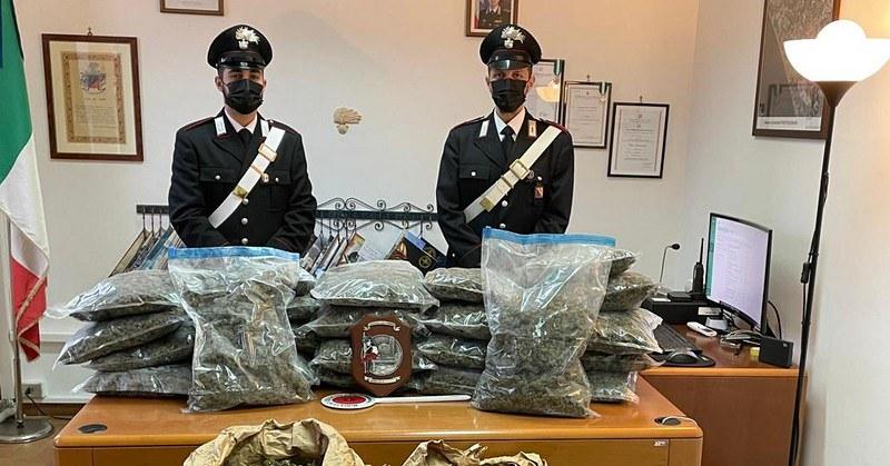 Pontecagnano, 42 chili di droga scoperti in un pacco fermo nei magazzini Sda