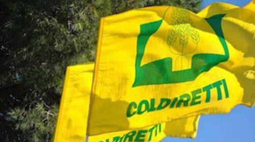 Coldiretti: in Campania le chiusure hanno affossato 700 agriturismi
