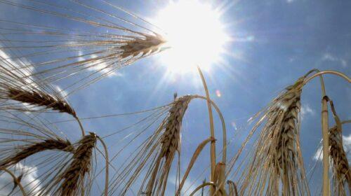 Onu: cambiamenti climatici implacabili, 'doppio colpo' con il Covid