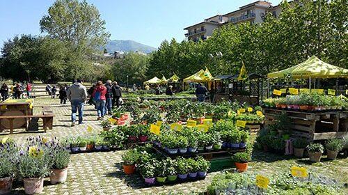 """Domani e domenica torna """"Salerno in Flora"""", evento dedicato al Florovivaismo"""