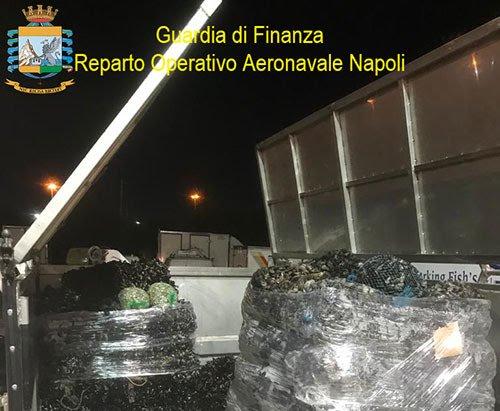 Maxi sequestro di pesce ai mercati ittici di Mugnano e Salerno