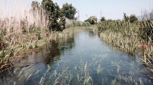 Fiume esondato nell'Agro nocerino sarnese, famiglie risarcite: condannati Regione e Consorzio