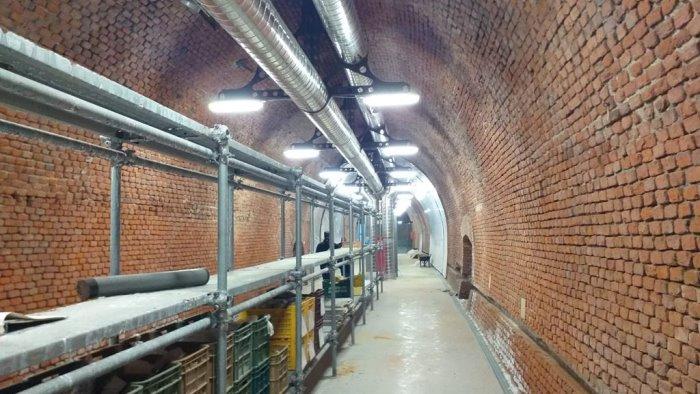A velia prosegue il progetto del museo archeologico nella galleria sotterranea