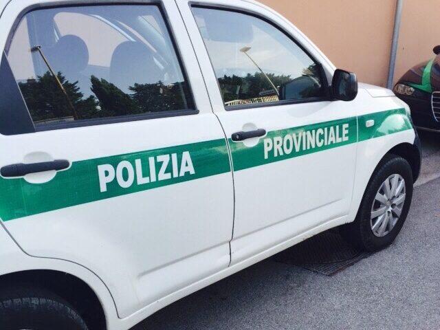 Anche la polizia provinciale a controllo della movida di Salerno