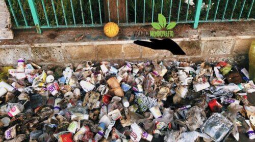 Vogliamo un mondo pulito, gli attivisti raccolgono a Mercatello 38 kg di rifiuti
