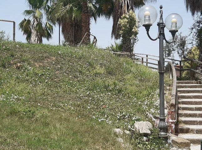 """Troppe api nel Parco urbano di San Marzano sul Sarno, scatta la denuncia del gruppo consiliare """"Noi sempre tra Voi"""""""