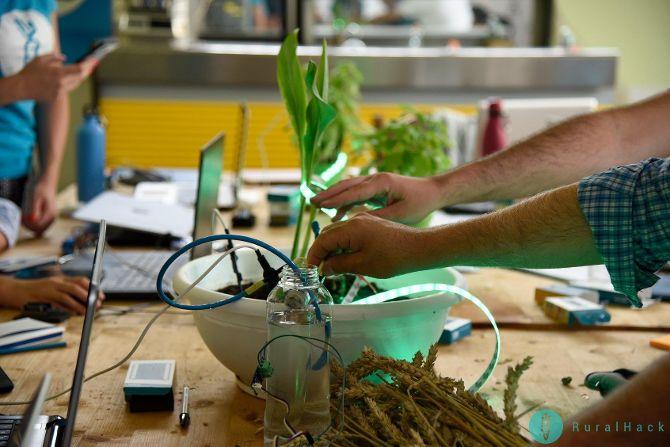 Dieta Mediterranea, un modello per l'innovazione con Pidmed: tre giorni di formazione