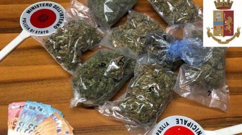 Coltivava droga, arrestato incensurato di Capaccio