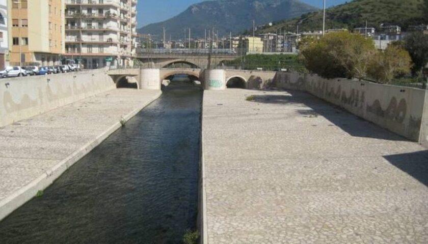 Orrore a Salerno, cane chiuso in una valigia e gettato nel fiume