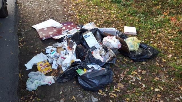 Polla, rifiuti abbandonati nei pressi di un canale: trasgressore scovato e multato