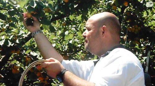 Difendersi dalla calura dell'anticlione mangiando sempre frutta fresca, sia a pranzo che a cena