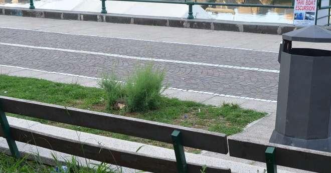 Salerno sporca, il gruppo Oltre: il sindaco non utilizza cestini già comprati