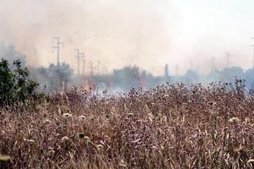 Incendio in provincia di Potenza, salernitano nei guai