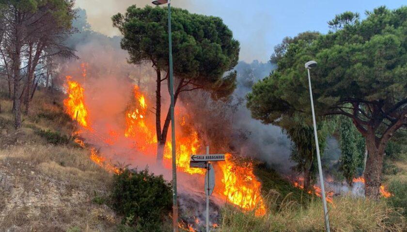 """Incendi a Salerno, Cammarota: """"La città rischia grosso senza prevenzione"""""""