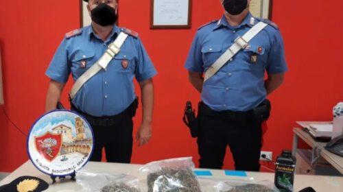 In casa con oltre 4 etti di marijuana: arrestato 33enne salernitano a Giovi