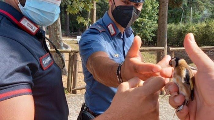 Richiami sonori per la caccia, nei guai due cacciatori a Eboli